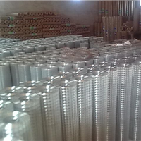 供应镀锌玉米网-价格优惠