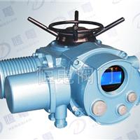 供应DZW30-24多回转电动执行器-扬州恒电