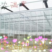 供应温室建设大棚建设温室智能工程