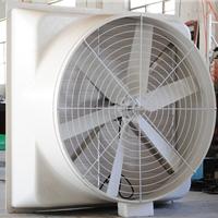 供应上海玻璃钢风机 皮带式玻璃钢风机价格