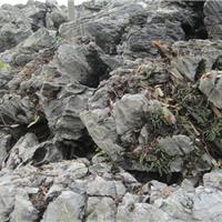 供应广东英石,英石假山石批发,英石石材石料