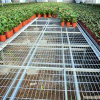 温室养殖用苗床网片