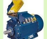 MarelliMotori电机