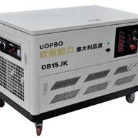 供应15KW汽油发电机品牌