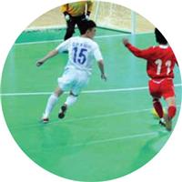 博高厂家直销批发五人制室内足球场运动地胶