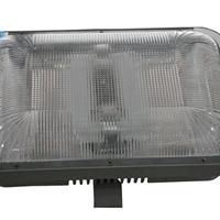 供应NFC9175长寿顶灯