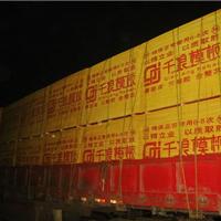 浙江华东木材市场 建筑模板价格