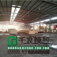 宁波洞桥木材市场建筑模板价格