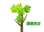 �县坤德木业有限公司