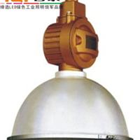 SBF6112-YQL100防水防尘防腐工矿无极灯