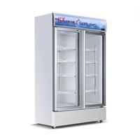 供应双门展示柜BL-900防爆冰箱