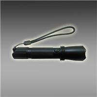 微型防爆电筒 强光防爆电筒 YBW5620