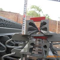 供应C型 D型 E型 F型桥梁板式伸缩缝
