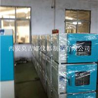 供应真空干燥箱DZF-6020