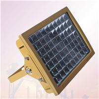 供应LED防爆免维护泛光灯