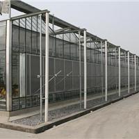 专业承揽各种钢结构智能温室大棚
