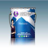 中国一线品牌,广东省名牌墙面防水涂料