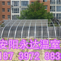 供应焦作 商丘几字钢温室大棚建造定制