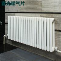 供应钢二柱散热器 低碳钢工业用钢制片