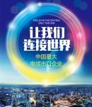 广州禾丰电线电缆有限公司
