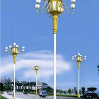 供应新款景观灯 LED景观灯 玉兰灯 中华灯