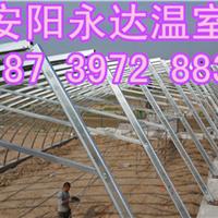 供应郑州专注建造温室大棚土坑温室安装工程