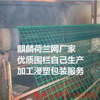 加工生产铁丝网/麒麟荷兰网围栏/绿色浸塑护栏网