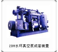 博山天体供应2BW系列水环真空泵成套装置