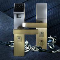 供应智能锁,指纹锁,密码锁