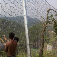 供应各种规格边坡主动被动防护网钢绳网