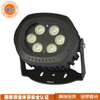 独家新款 厂家直销 LED投光灯夜景装饰