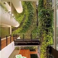 销售供应室内室外仿真植物墙