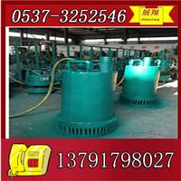 供应BQS隔爆潜水排污电泵,排污排沙潜水泵