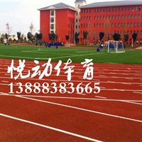 云南专业施工塑胶跑道,塑胶篮球场网球场