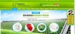 新疆福吉亚工贸有限公司