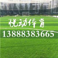云南塑胶跑道,硅PU球场,人造草球场建设