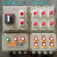 BXM(D)8061-12回路防爆防腐照明动力配电箱