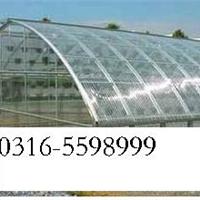 文安县【温室大棚】采光板厂、最新、价格