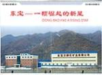 东宝方解石矿业有限公司