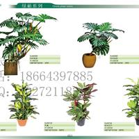 供应批发仿真绿萝龟背芋类盆栽植物
