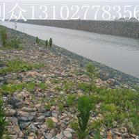 镀锌pvc包塑生态格网泥石流生态格网挡土墙