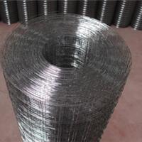 供应改拔丝电焊网