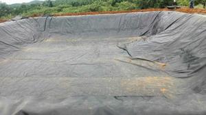 厂家促销耐腐蚀HDPE防渗土工膜 价格合理