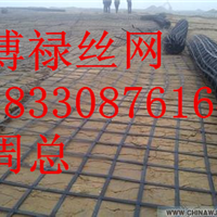供应钢塑土工格栅