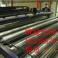供应安平县塑料土工格栅