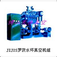 供应JZJ2S 系列罗茨水环真空机组