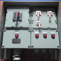 供应BXX51-2/100防爆动力检修箱