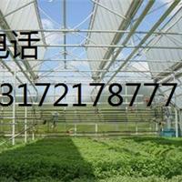 透明采光板价格#####0.8-1.6毫米----