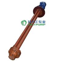 供应化工泵:WSY、FSY型防爆玻璃钢液下泵