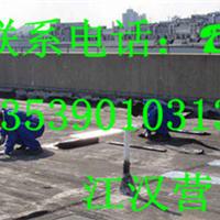供应东莞市天棚防水、东莞顶棚防水补漏公司